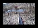 Секреты успешной охоты на бобра в разное время года!