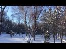 В Новосибирске начались крещенские морозы. Зимний пейзаж.