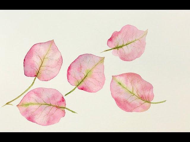Beginners Watercolors Bougainvillea leaves Tutorial