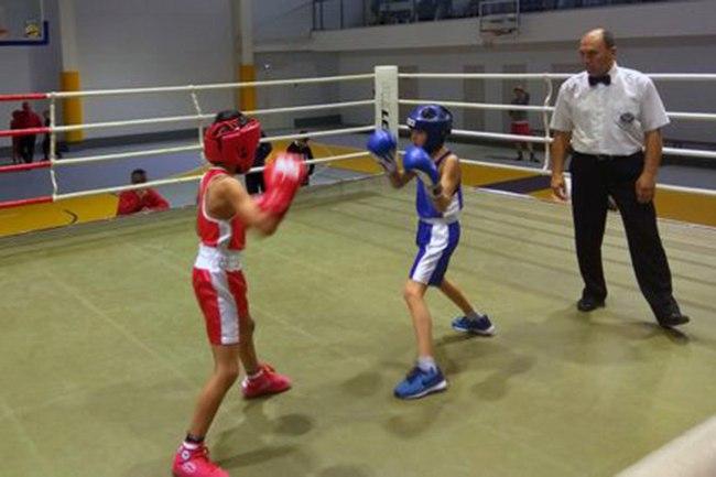 Под Таганрогом прошли соревнования по боксу, посвященные казачьему празднику