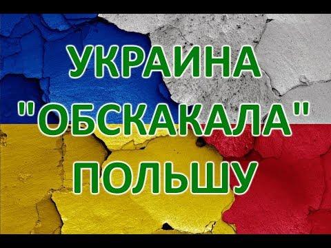 Комедия! Как держава Украина обскакала Польшу по всем фронтам