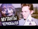 Чернобыль - Жуткие мутанты - Вся правда!