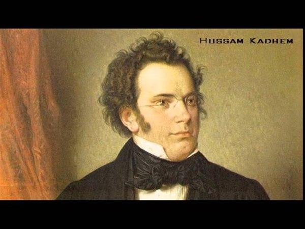 Franz Schubert - Piano sonata n 19 in B flat D 960
