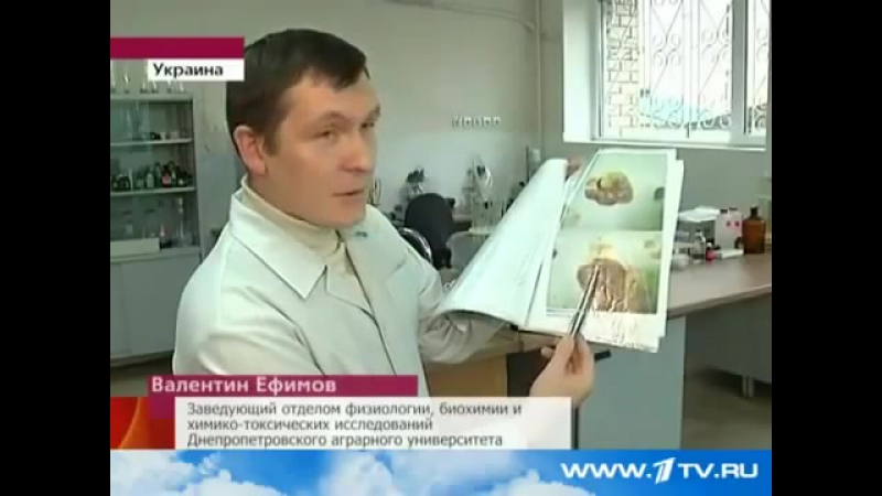 Чипсы и сухарики - ОРУЖИЕ МАССОВОГО УНИЧТОЖЕНИЯ