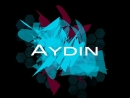 The AYDIN - Hot Turkish (DruM and Bass SpeciaL Mix)