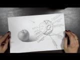 Светотень - 10 градаций. Как рисовать объем. Академический рисунок.