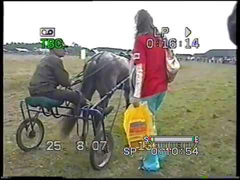 Раскатиха 2007 награждение лошади 3 лет орл рыс пор