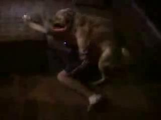 Очередной игроман и трахающая его собака.