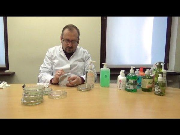 Мікробіологічний аналіз рідкого мила різних виробників