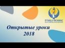 Художественная гимнастика Лыкова 3 группа