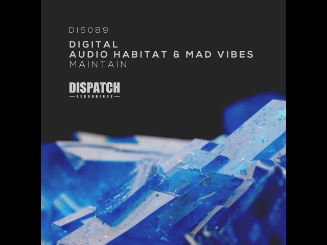 Digital, Audio Habitat Mad Vibes - Maintain - DIS089