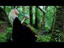Celtic Nature - Irish Traditional Melodies (Album)