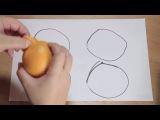 Гуманитарий оъяснил математику на апельсинах