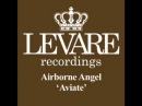 Airborne Angel - Aviate (Original Mix)