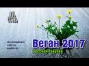 Веган 2017 (русская озвучка) vegan 2017