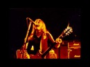 AC/DC - Malcolm Young Moments