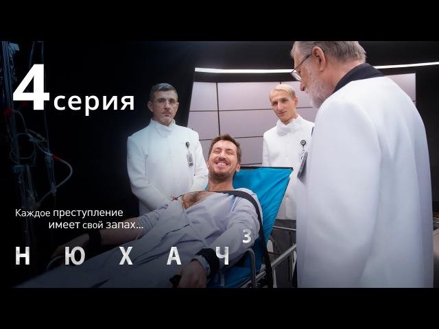 НЮХАЧ. СЕЗОН 3. СЕРИЯ 4. The Sniffer. Season 3. Episode 4