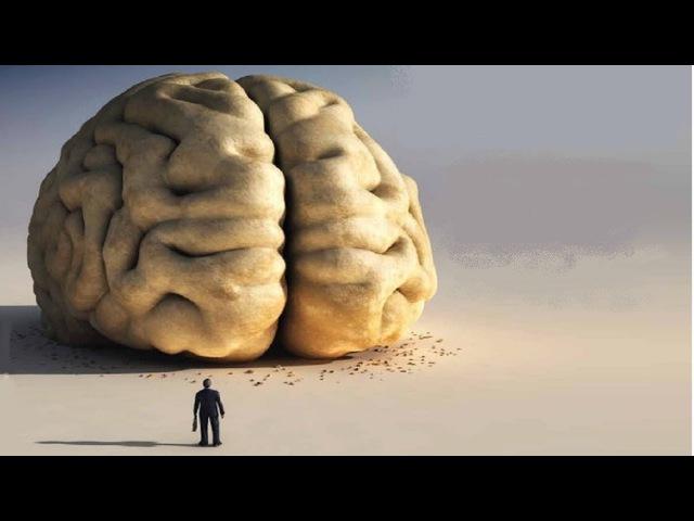 Так наш мозг и богом и дьяволом может быть? Привычные истины оказываются вовсе не тем, чем кажутся.