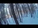 Охота на лосей с подхода Moose hunting