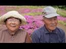 Мир наизнанку. Япония. История семьи Куроки муж посадил тысячи цветов - для своей слепой жены..