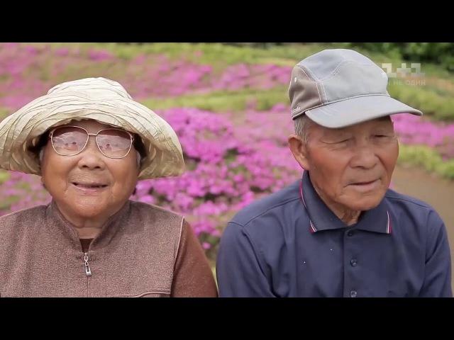 Мир наизнанку. Япония. История семьи Куроки: муж посадил тысячи цветов - для своей слепой жены..