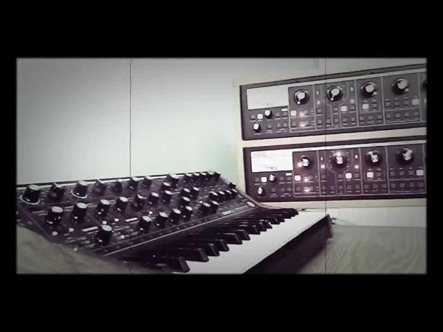 Moog Sub 37 Slim Phatty Polychain: Sequence