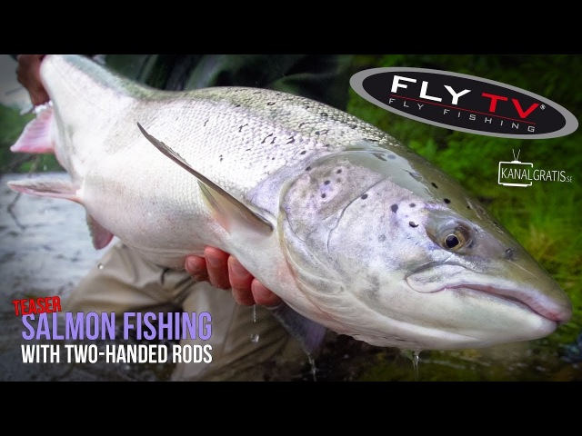 [TEASER] FLY TV - Salmon Fishing with Two-Handed Rods