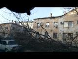 Деревья падают на машины, Новороссийск 2018.01.13 Норд-Ост