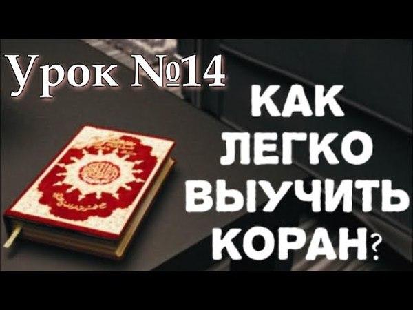 Читай Коран || №14 Урок, Правило- 'Ташдидуд с танвином' (с Нуля до Корана)