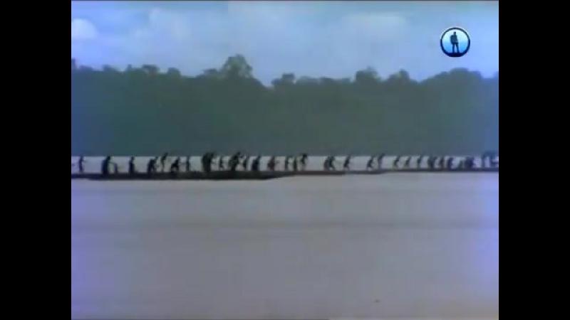 Магия приключений. Папуа-Новая Гвинея. Асматы. Лесные воины. Охотники за головам