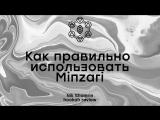 Как правильно использовать Minzari