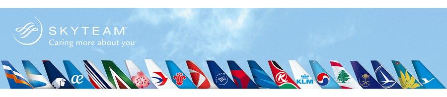 Логотипы авиакомпаний - участниц SkyTeam