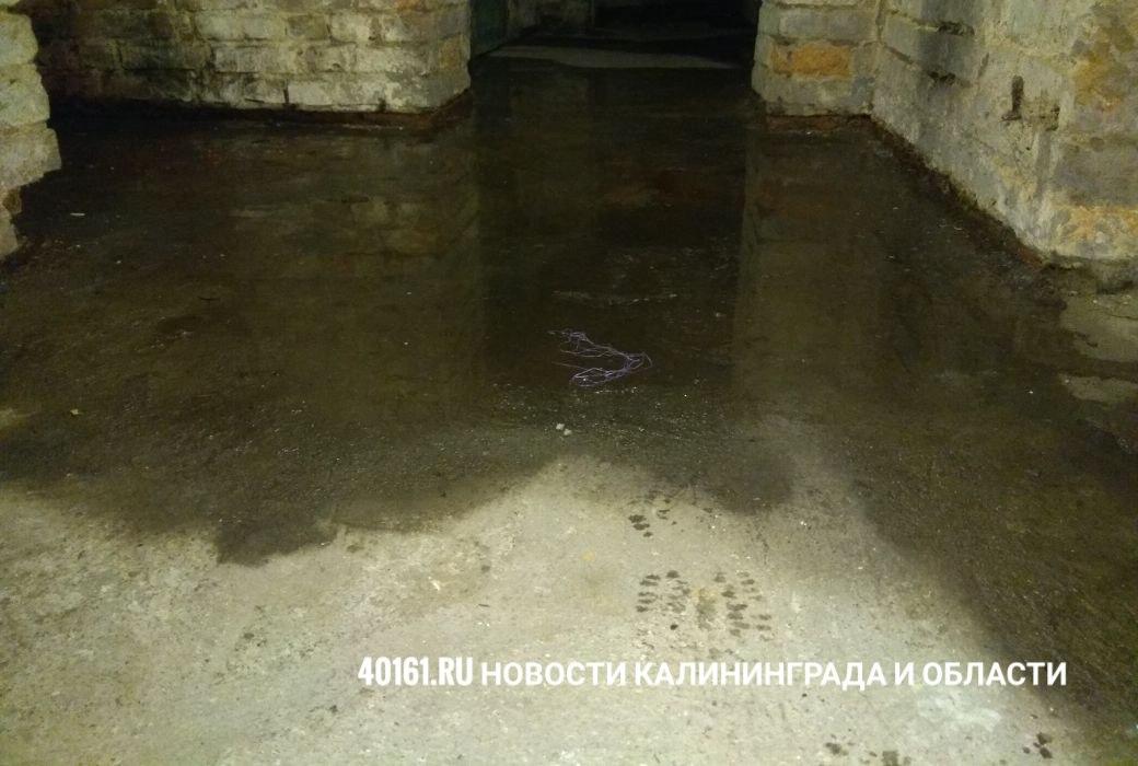 Советск. Улица Каштановая, дом 4