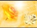 Peygamberimiz için Bir Gül Duygusal Fon Müzik Dursun Ali Erzincanli Videoislami
