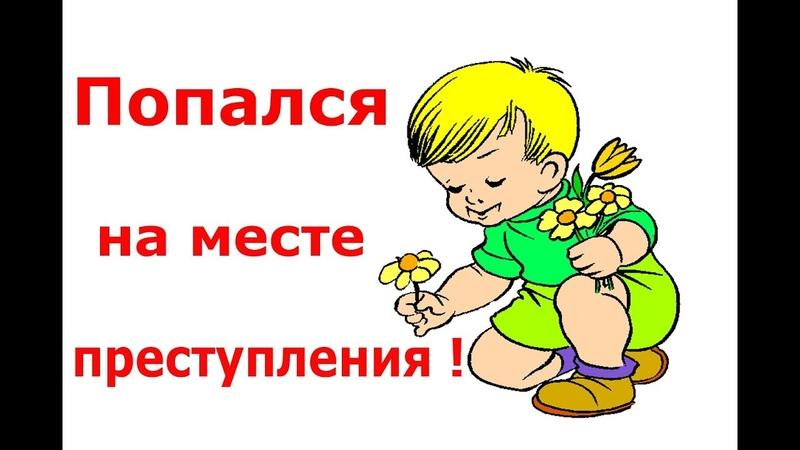 Дети цветы жизни или попался на месте преступления!
