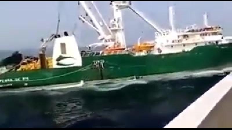 Rumbo de colisión entre los atuneros Playa de Ris y Sant Yago Tres