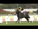 Trapeze Artist wins Expressway Stakes