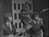 THE COUNT FIVE-PSYCHOTIC REACTION,(1966).wmv