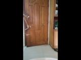 Кот открывает двери (VIDEO ВАРЕНЬЕ)