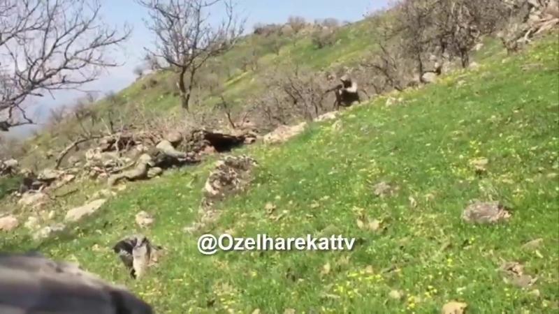 Кадры операции турецкого спецназа против курдов в районе турецкого города Батман