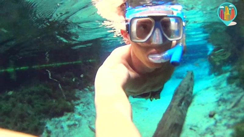 Под водой посреди джунглей Амазонки. БРАЗИЛИЯ