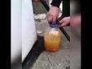 Вот почему запрещают заливать бензин в пластиковую тару на заправке