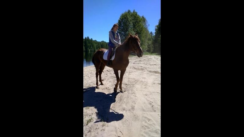 Первое купание коня - До