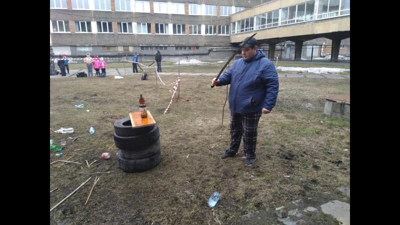 Бойцовые коты г.Новокузнецк