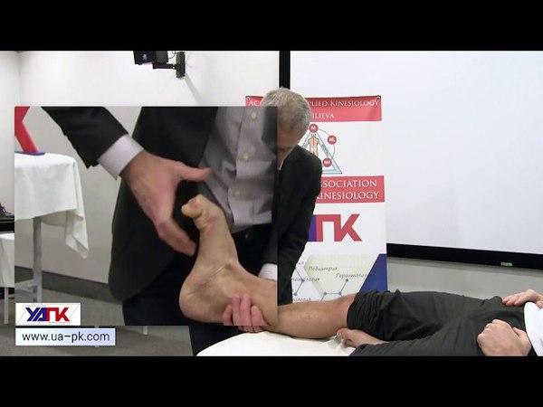 Техника тестирования ПЕРЕДНЕЙ БОЛЬШЕБЕРЦОВОЙ мышцы