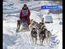 Дух Арктики_16.01.18