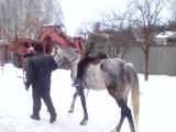 новый год в деревне с любимыми дочами)))