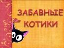 Виртуальная детская книга Забавные котики