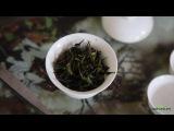 Как делают чай. Улун Фэнхуан Даньцун в горах Феникса, традиционная технология. Ч ...