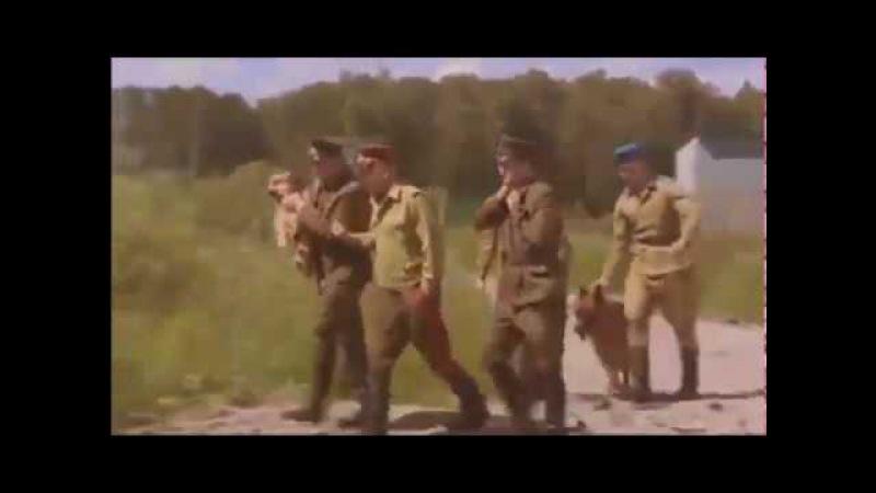 Десантный батя (4 серия) - все серии военного сериала Десантный батя.